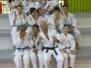 Fête du judo 16/01/2015